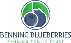 Benning Blueberries